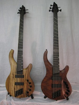 The Custom Slanted Fret Starhawk Bass